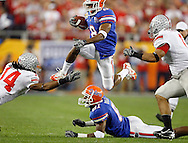 Florida receiver Percy Harvin hurtles defenders during the second quarter of the Florida Gators vs. Ohio State Buckeyes at University of Phoenix Stadium in Glendale, AZ Monday (1/8/07). BRENDAN FITTERER | Times  SUMMARY: Florida Gators vs. Ohio State Buckeyes at University of Phoenix Stadium in Glendale, AZ, Monday (1/8/07)..