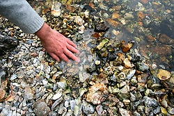 UK ENGLAND HAMPSHIRE ST MARY BOURNE 12AUG06 - Clean gravel where water flows into St. Mary Bourne Lake, built by the Evans family to preserve fish stocks in the river Bourne...jre/Photo by Jiri Rezac..© Jiri Rezac 2006..Contact: +44 (0) 7050 110 417.Mobile:  +44 (0) 7801 337 683.Office:  +44 (0) 20 8968 9635..Email:   jiri@jirirezac.com.Web:    www.jirirezac.com..© All images Jiri Rezac 2006 - All rights reserved.