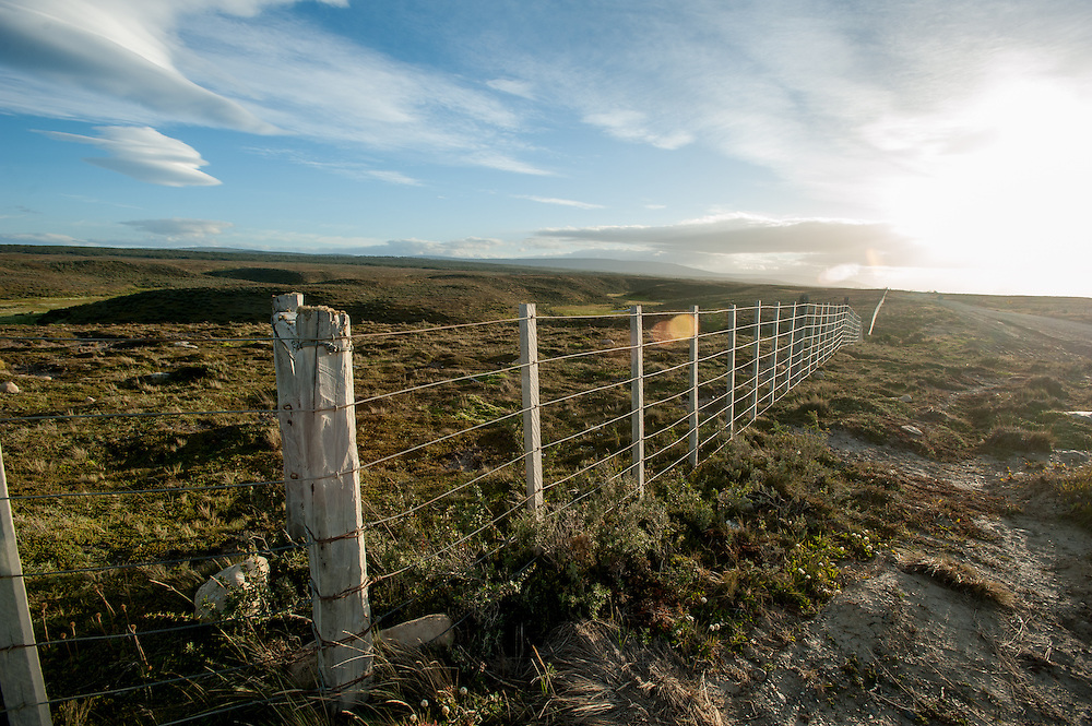 endless fence, patagonia, Chile