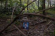 Mr Ari Songkraw, the vice-President of the Pha Tom Num Conservation Association was shot dead in a rubber plantation on 30 December 1999, in Kanchanadit, Surat Thani Province. He was trying to protect the forest from illegal logging.