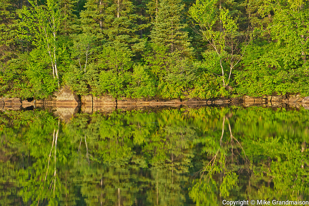 Tree reflection in Lac Modène<br />