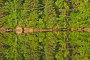Tree reflection in Lac Modène<br />La Mauricie National Park<br />Quebec<br />Canada
