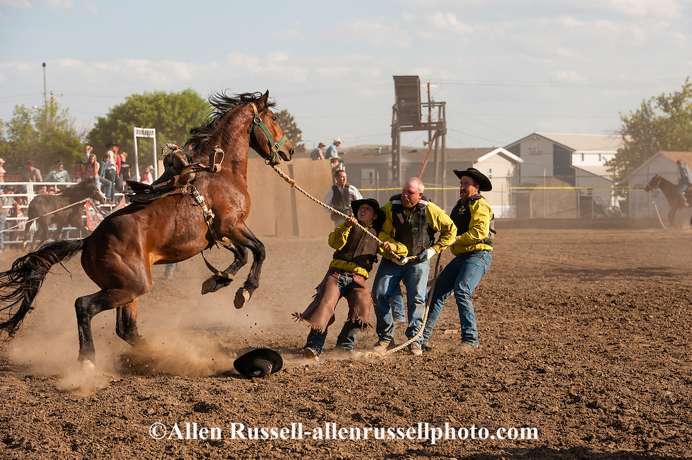 Wild Horse Race, McCarville Racing Team, Miles City Bucking Horse Sale, Montana, MODEL RELEASED on three front cowboys only