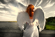 Young woman wearing spread angel wings, from behind, a dark scene. Levy Park and Preserve, Long Island, New York, USA.