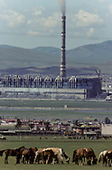 Mongolia. naadam camp  OulanBator