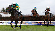 Barry Geraghty riding Regal Encore clears the last fence to win the SIS Novices´ Chase at Plumpton Racecourse - 13 Dec 2015