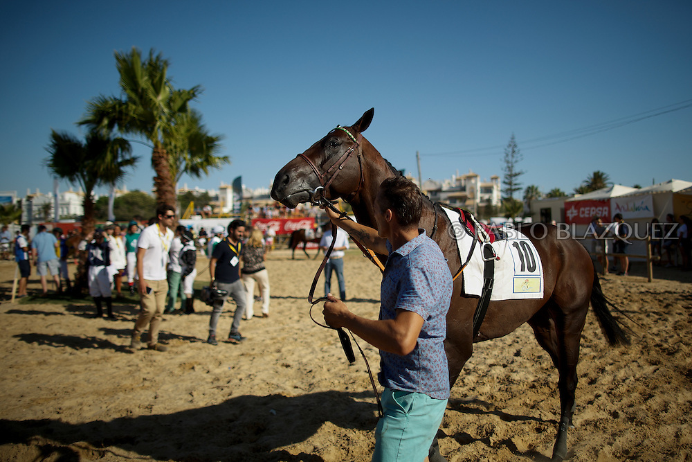 12/08/2016. A man display a racing horse for stakes before racing along the beach during the beach horse races on August 12, 2016 in Sanlucar de Barrameda, Cadiz province, Spain. Sanlucar de Barrameda yearly horse races traditional origin started with informal races of horse's owners delivering fish from the port to the markets. But the first formal races date back to 1845 and they are the second oldest in Spain, after Madrid. The horse races take place near the Guadalquivir river mouth during August