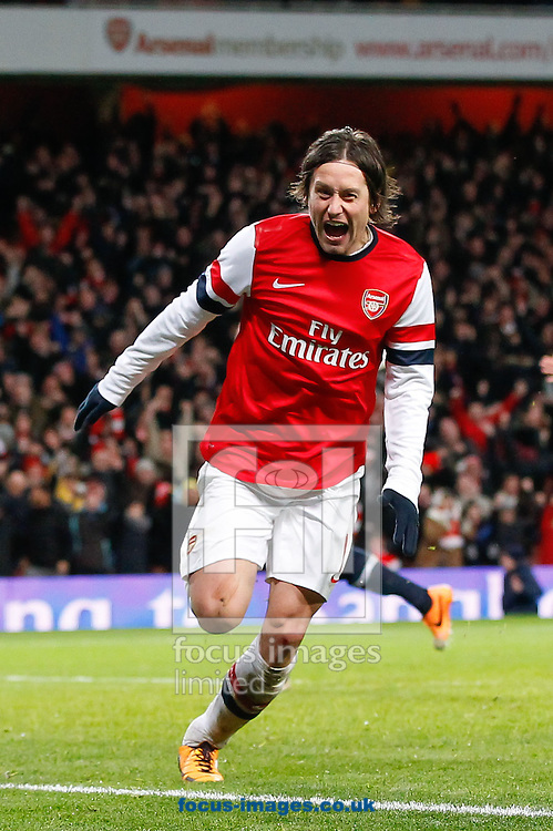 Picture by Andrew Tobin/Focus Images Ltd +44 7710 761829<br /> 04/01/2014<br />   Tomas Rosicky of Arsenal celebrates after scoring their second goal during the The FA Cup match at the Emirates Stadium, London.