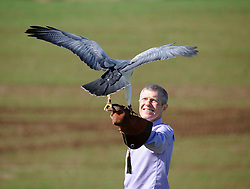 Willie Rennie, Elite Falconry, Cluny, 7-4-2016<br /> <br /> Willie seen with Midnight the Black Chested Buzzard Eagle<br /> <br /> (c) David Wardle | Edinburgh Elite media