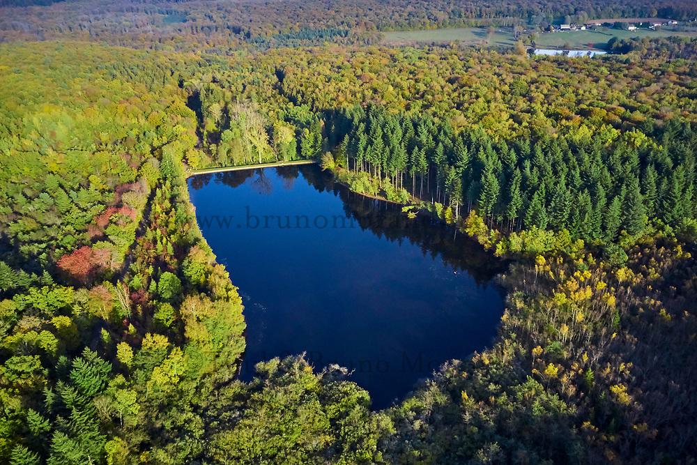 France, Saone et Loire (71), parc naturel régional du Morvan, Etang des Cloix // France, Burgundy, Saone et Loire, Morvan park, Cloix lake