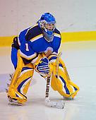 John Abbott College Lady Islanders Hockey Team versus Limoilou