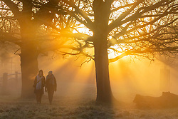 © Licensed to London News Pictures. 18/12/2019. London, UK. Walkers enjoy a frosty and foggy morning in Richmond Park as weather experts predict a sunny day followed by rain and wind for the State opening of Parliament on Thursday . Photo credit: Alex Lentati/LNP