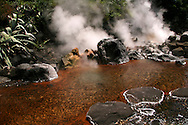"Chinoike or ""blood pond hell"" features a pond of hot, red water. It is one of the most photogenic of the nine Beppu hells."