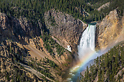 Lower Falls from Lookout Point, Grand Canyon of the Yellowstone River, Yellowstone National Park, Wyoming.