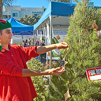 Head Elf from the Living Christmas Company, Justin Casillas, decorates his living Christmas tree at the Santa Monica Farmers Market on Sunday, November 14, 2010.