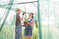 Gardeners discussing over potted plant at greenhouse