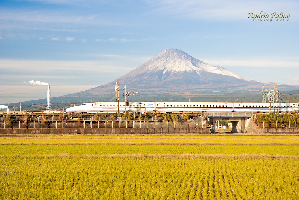 High speed train crossing between rice field and Mt. Fuji, Honshu, Japan