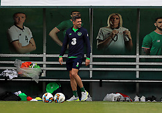 Republic of Ireland Training Session and Press Conference - 13 November 2017