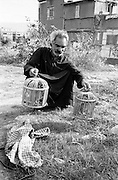 Shatila, near the sports city of Beirut. A Syrian of palestinian origin survives by selling birds captured in the wild<br />  <br /> Chatila, proche de la cit&eacute; sportive. Un syrien d'origine palestinienne survit gr&acirc;ce &agrave; la vente d'oiseaux captur&eacute;s dans la nature.