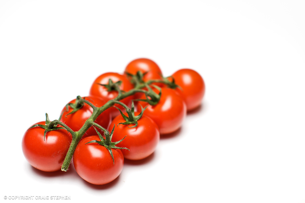 Tomatoes on the vine against a white background