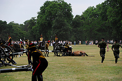 © licensed to London News Pictures. LOCATION, UK  02/06/2011. Soldiers attend to a horse that was injured during the Queen's Gun Salute in Hyde Park. Please see special instructions for usage rates. Photo credit should read MARY STAMM-CLARKE/LNP © licensed to London News Pictures. LONDON, UK  02/06/2011. Soldiers attend to a horse that was injured during the Queen's Gun Salute in Hyde Park. Please see special instructions for usage rates. Photo credit should read MARY STAMM-CLARKE/LNP