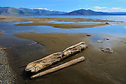 Kluane Lake and driftwood<br /> Kluane National Park<br /> Yukon<br /> Canada