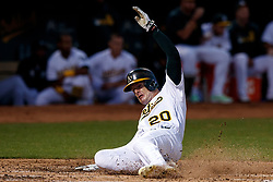 OAKLAND, CA - SEPTEMBER 21:  Mark Canha #20 of the Oakland Athletics scores a run against the Texas Rangers during the second inning at the RingCentral Coliseum on September 21, 2019 in Oakland, California. The Oakland Athletics defeated the Texas Rangers 12-3. (Photo by Jason O. Watson/Getty Images) *** Local Caption *** Mark Canha