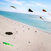Treasure Island Kite Fest, Treasure Island, Fl