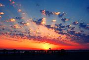 Israel, Tel Aviv, Mediterranean sun set