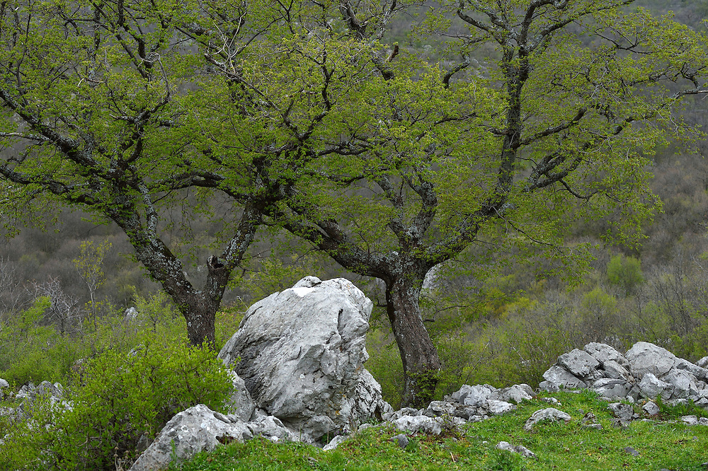 Mala Libinje, Velebit mountains Nature Park, Croatia