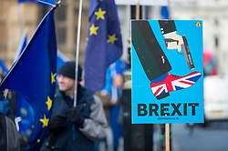 © Licensed to London News Pictures. 11/01/2019. LONDON, UK.  Anti-Brexit demonstrators stand outside the Houses of Parliament with flags and placards.  MPs are due to vote on Prime Minister Theresa May's Brexit deal on 15 of January.  Photo credit: Stephen Chung/LNP