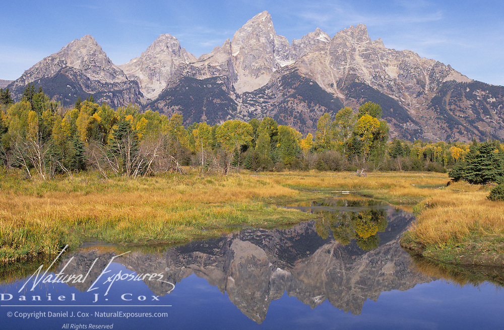 A reflection of the Grand Teton Range in a beaver pond at Schwabacher Landing in Wyoming.