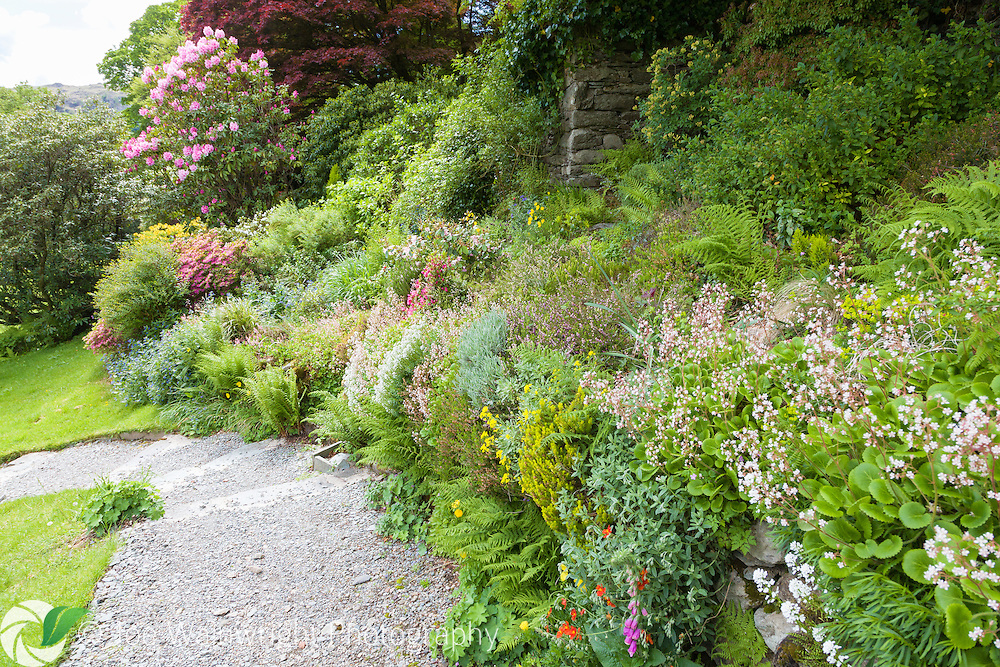 A path beside a spring border at Rydal Mount, Cumbria, once home to poet William Wordsworh. Photographed in May