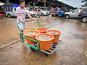 20 JUNE 2014 - SAMUT SAKHON, SAMUT SAKHON, THAILAND: A Burmese migrant worker pushes buckets of shrimp through a processing center in Samut Sakhon. Hundreds of thousands of migrant workers from Myanmar work in the Thai fishing industry. Samut Sakhon, (sometimes still called Mahachai, its historical name) is a large fishing port. Many Burmese live in the town and work in the fish process plants. Although hundreds of thousands of Cambodians fled Thailand last week after the military coup, the Burmese workers have stayed and are still working in many Thai towns.    PHOTO BY JACK KURTZ