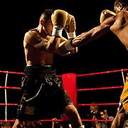 Boxing : Belgian championship featherweight - MISKIRTCHIAN vs ENCARNACION