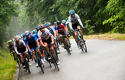 Peloton in Goriska Brda during 4th Stage of 26th Tour of Slovenia 2019 cycling race between Nova Gorica and Ajdovscina (153,9 km), on June 22, 2019 in Slovenia. Photo by Vid Ponikvar / Sportida