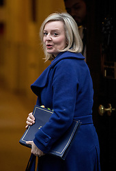 © Licensed to London News Pictures. 31/01/2017. London, UK. Justice Secretary and Lord Chancellor Liz Truss arriving at Downing Street for a cabinet meeting this morning. Photo credit : Tom Nicholson/LNP