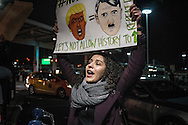 Woman holds sign comparing President Trump to Nazi German leader, Adolph Hitler, at the Anti-Trump rally at John F. Kennedy International Airport, after the Trump administration implemented a ban on entry to citizens of 7 Muslim-majority nations into the United States.  New York, New York, USA.  28 January 2017