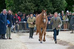 Townend Olivier, (GBR), Armada<br /> First Horse Inspection - Mitsubishi Motors Badminton Horse Trials <br /> Badminton 2015