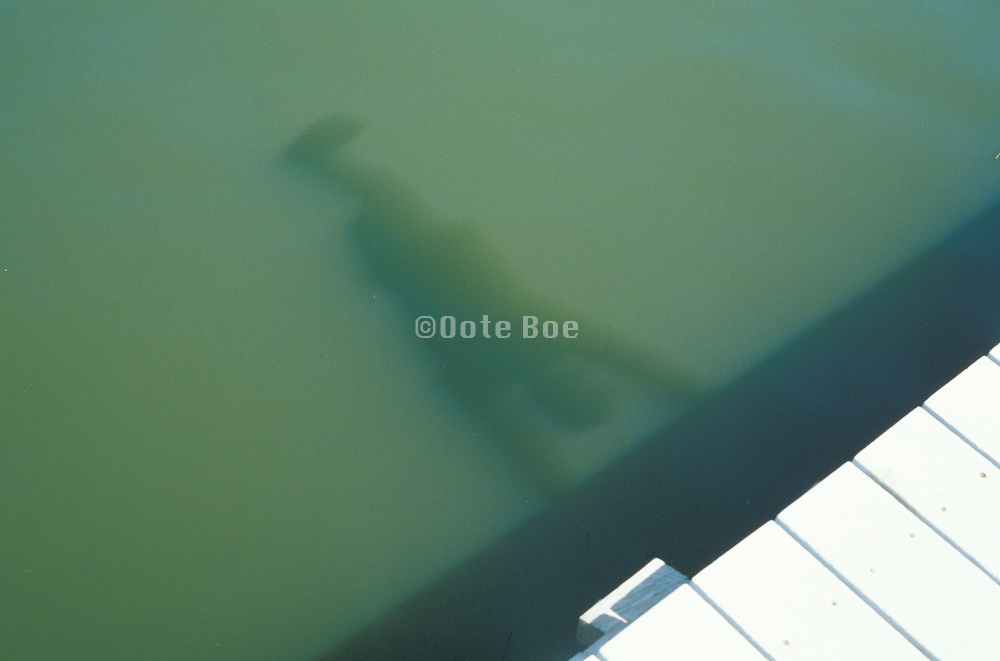abstract view of person hanging above water