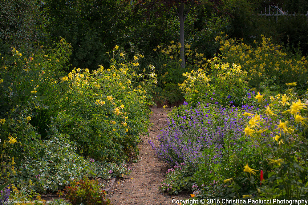 Historic Foundation garden on Canyon Road in Santa Fe, New Mexico (Christina Paolucci, photographer).