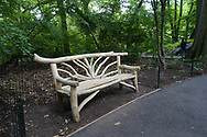 A rustic bench near Azelea Pond in the Ramble of Central Park