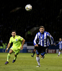 Gary Hooper of Sheffield Wednesday and Richie Towell of Brighton & Hove Albion chase down the ball - Mandatory by-line: Robbie Stephenson/JMP - 13/05/2016 - FOOTBALL - Hillsborough - Sheffield, England - Sheffield Wednesday v Brighton and Hove Albion - Sky Bet Championship Play-off Semi Final first leg