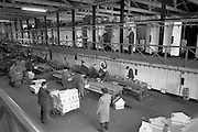 18/04/1963<br /> 04/18/1963<br /> 18 April 1963<br /> Banana mechanizatior machine at the Tropical Fruit Company, Sir John Rogers Quay, Dublin. Image shows machine for the movement of bunches of bananas down the line for packing.