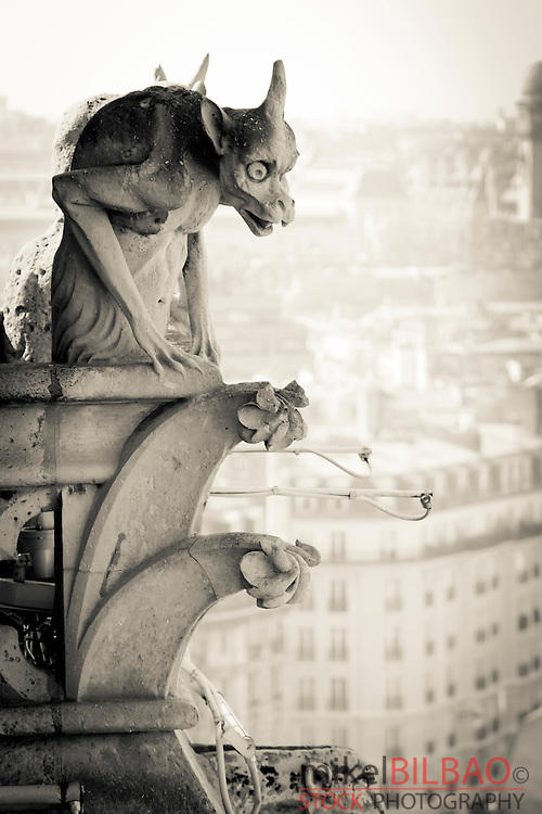 Gargoyle figure. Notre Dame Cathedral.<br /> Paris, France, Europe.