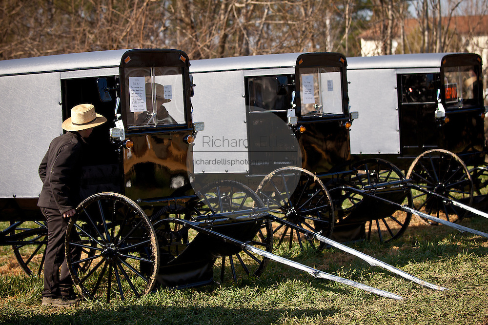 Amish man inspects a horse buggy during the Annual Mud Sale to support the Fire Department  in Gordonville, PA.