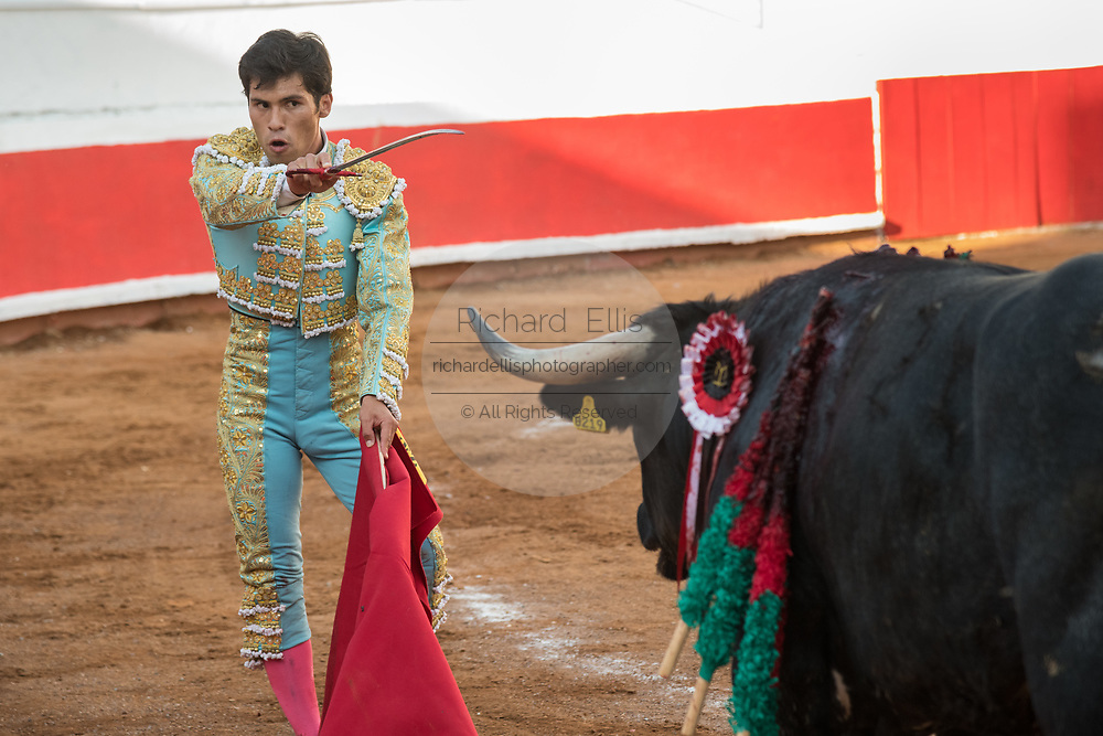 Mexican bullfighter Francisco Martinez performs with a bull at the Plaza de Toros March 3, 2018 in San Miguel de Allende, Guanajuato, Mexico.