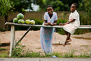 Children sell papayas by the roadside near Kpong, Ghana on Wednesday June 17, 2009.