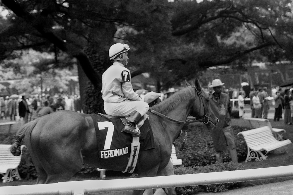 Paddock post parade for the Belmont Stakes with Kentucky Derby winner, Ferdinand, ridden by Hall of Fame jockey Willie Shoemaker. 1986.