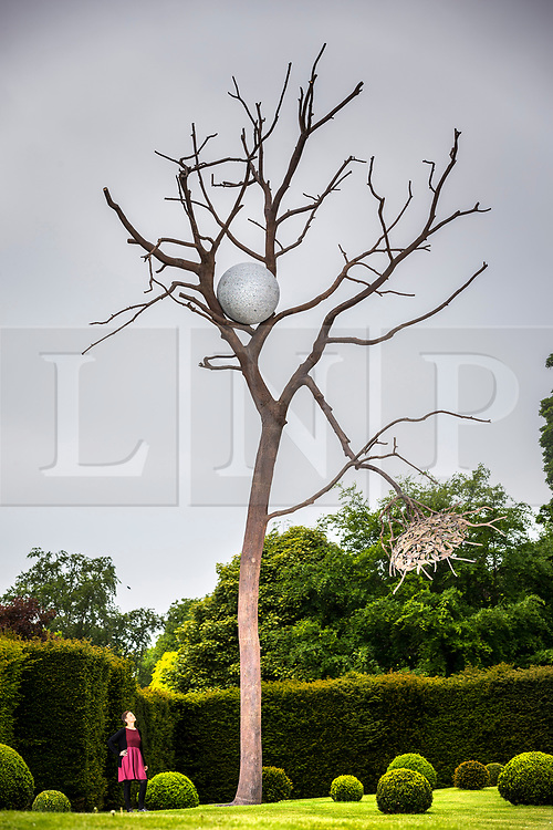 "© Licensed to London News Pictures. 24/05/2018. Wakefield UK. Kerry Chase looks a sculpture by Giuseppe Penone made of Bronze & Granite & called ""Luce e ombra"" at the Yorkshire Sculpture park this morning. Giuseppe Penone presents his extensive new exhibition in YSP's light-filled Underground Gallery and across the historic landscape. Works drawn from the past five decades of Penone's career, including many never shown in the UK, trace his evolving and thoughtful consideration of humanity's intimate relationship with the natural world. His poetic practice addresses themes around the body, nature, time, touch and memory, played out across different materials from stone, acacia thorns and graphite, to thousands of laurel leaves. Photo credit: Andrew McCaren/LNP"
